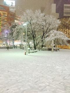 雪、池袋.jpg